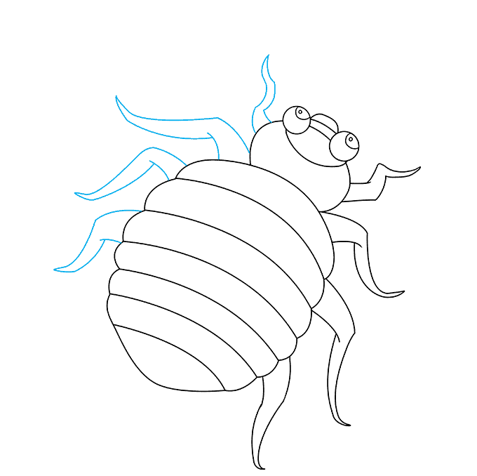 How to Draw Bed Bug: Step 7
