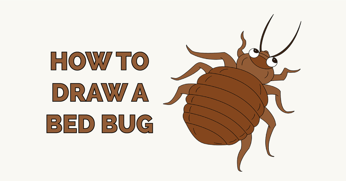 How to Draw a Bed Bug Featured Image