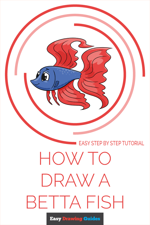 How to Draw a Betta Fish Pinterest Image