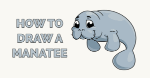 How to Draw a Manatee Featured Image