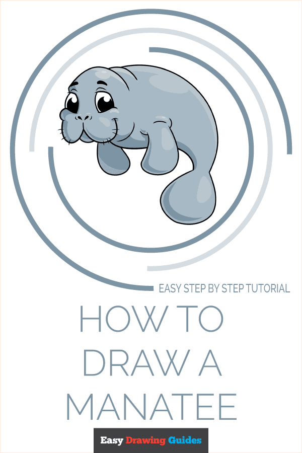 How to Draw Manatee | Share to Pinterest