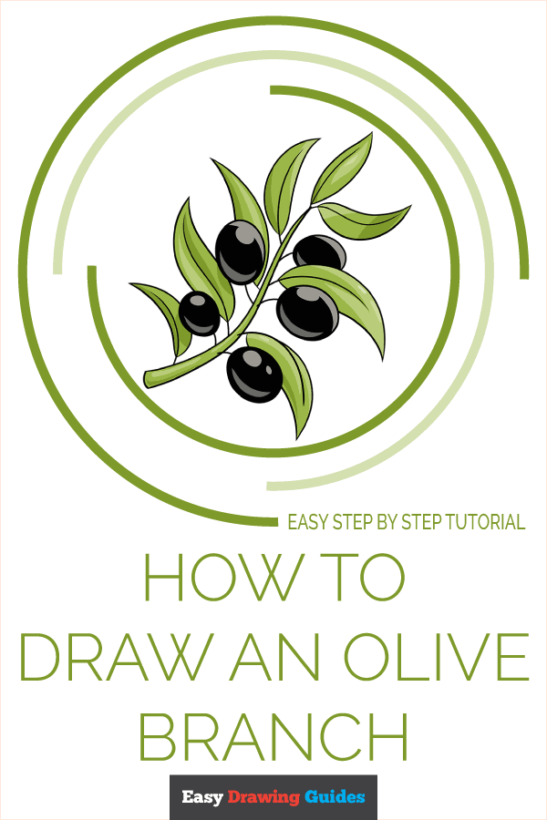 How to Draw Olive Branch | Share to Pinterest