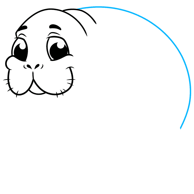 How to Draw Manatee: Step 6