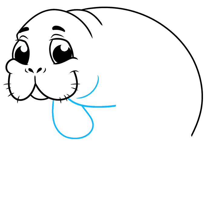 How to Draw Manatee: Step 7