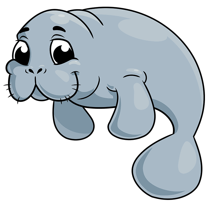 How to Draw Manatee: Step 10