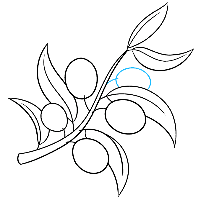 How to Draw Olive Branch: Step 7