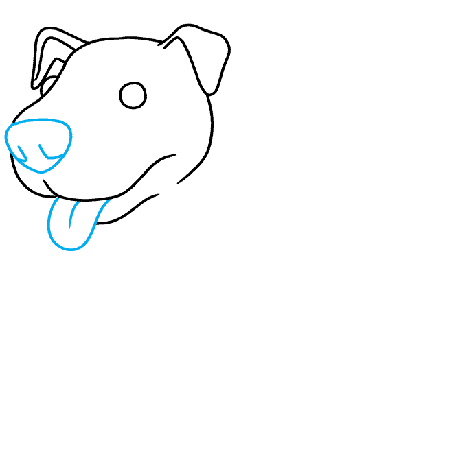 How to Draw Pitbull: Step 4