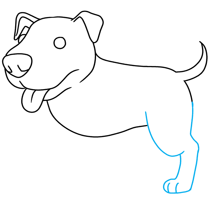 How to Draw Pitbull: Step 6