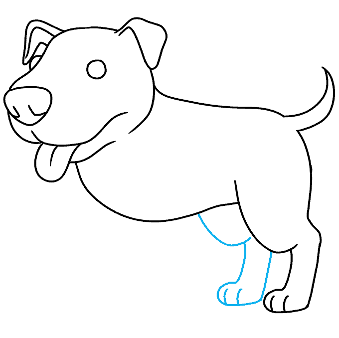 How to Draw a Pitbull Step 07