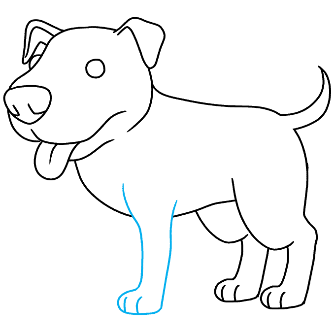 How to Draw Pitbull: Step 8