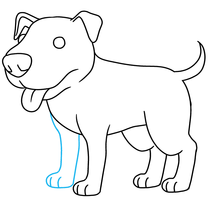 How to Draw a Pitbull Step 09