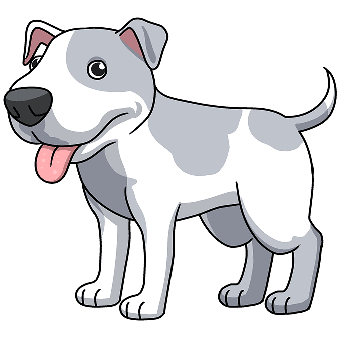 How to Draw a Pitbull Step 10