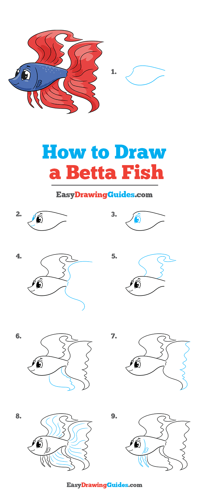 How to Draw a Betta Fish Step by Step Tutorial Image
