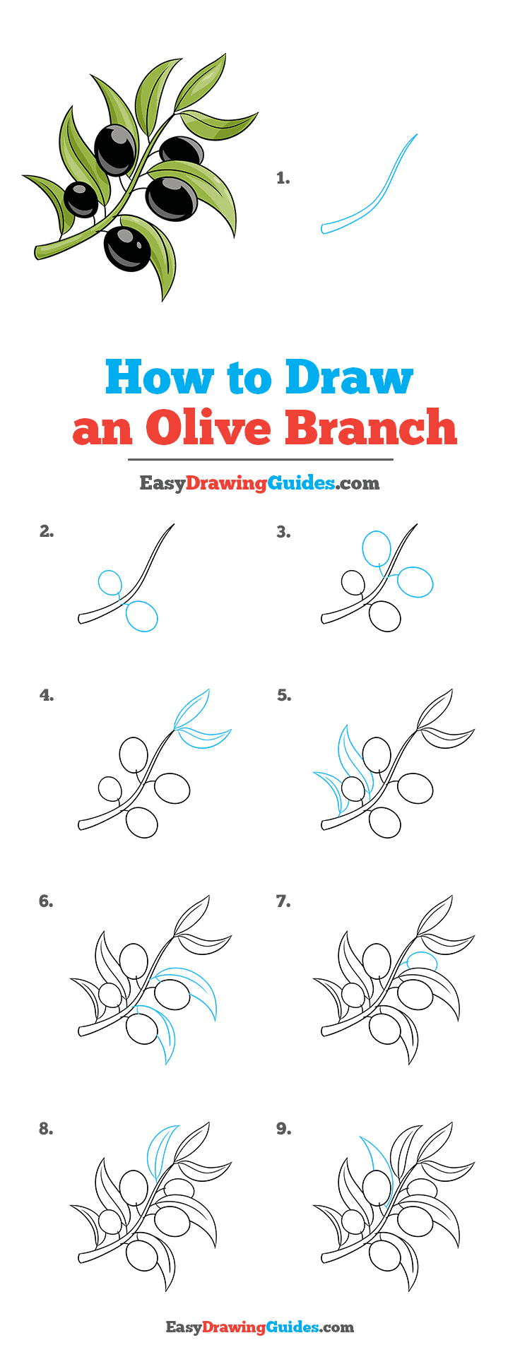 How to Draw Olive Branch