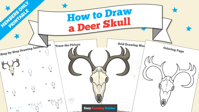 Printables thumbnail: How to draw a Deer Skull