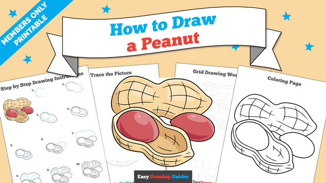 download a printable PDF of Peanut drawing tutorial