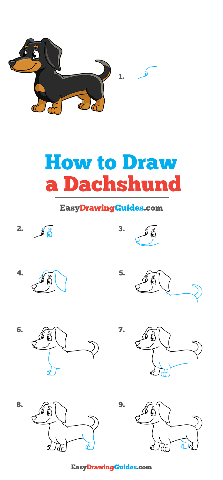How to Draw a Dachshund Step by Step Tutorial Image