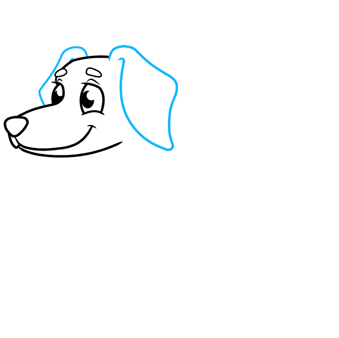 How to Draw a Dachshund Step 04