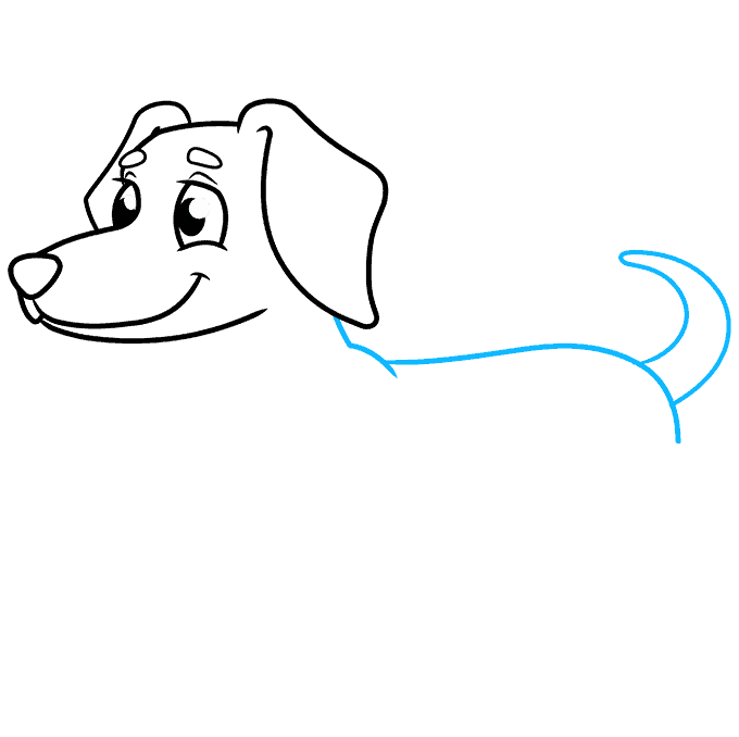 How to Draw a Dachshund Step 05