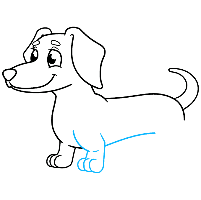 How to Draw a Dachshund Step 07