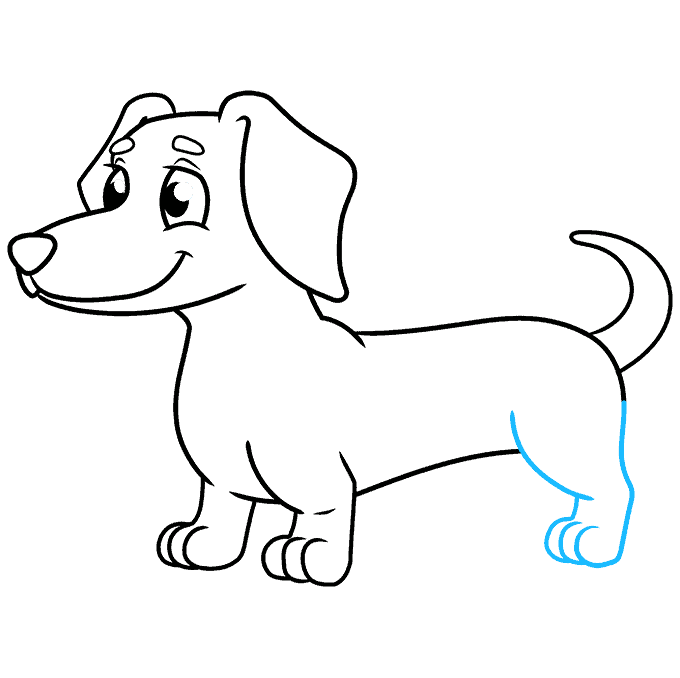 How to Draw a Dachshund Step 08