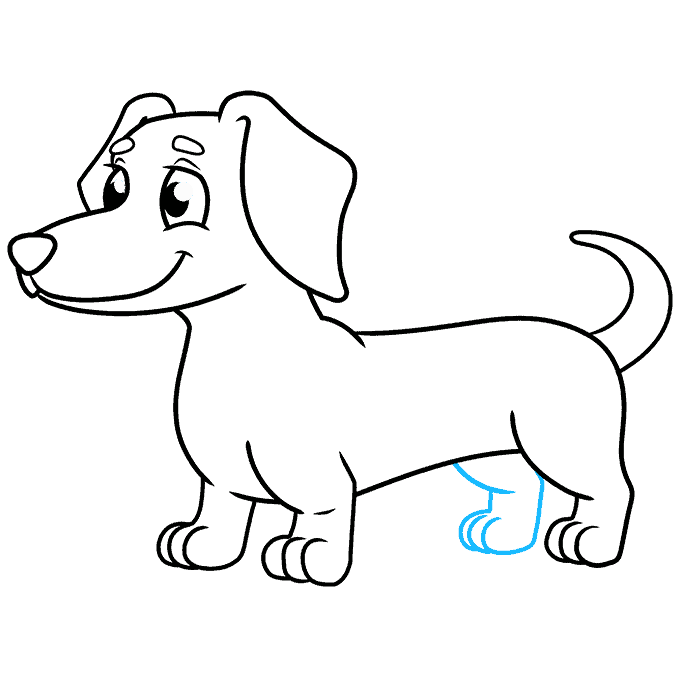 How to Draw a Dachshund Step 09