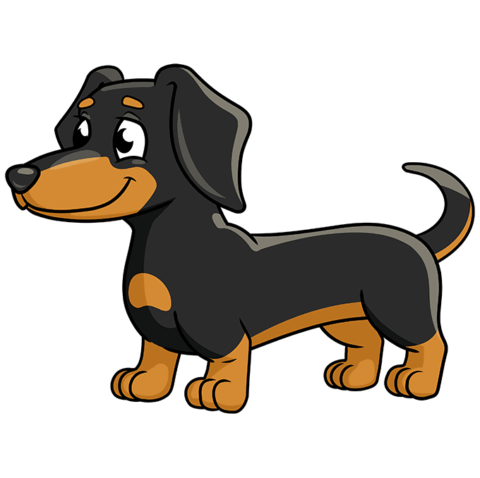 How to Draw a Dachshund Step 10