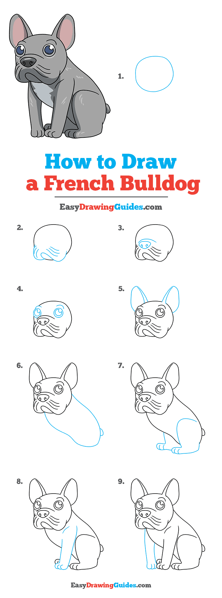 How to Draw a French Dog Step by Step Tutorial Image