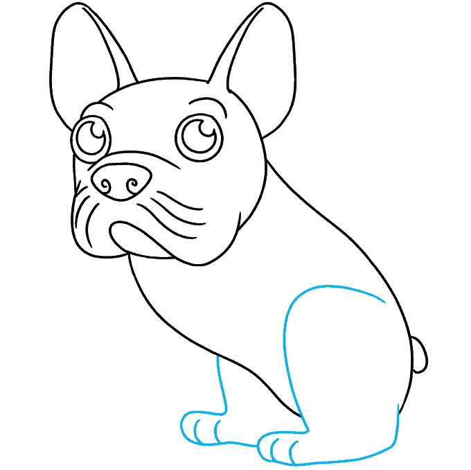 How to Draw a French Dog Step 07
