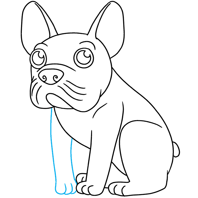 How to Draw a French Dog Step 09