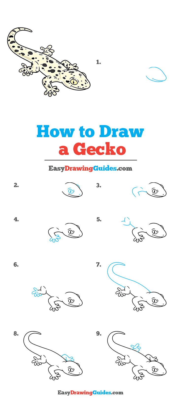How to Draw a Gecko Step by Step Tutorial Image
