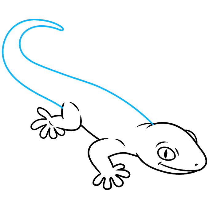 How to Draw a Gecko Step 07
