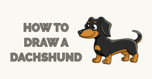 How to Draw a Dachshund Featured Image