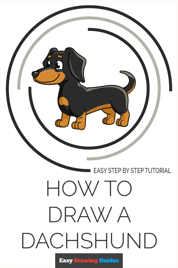 How to Draw Dachshund | Share to Pinterest