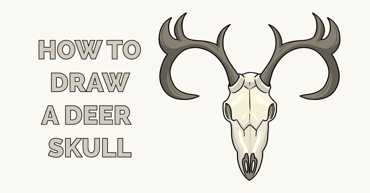 How to Draw a Deer Skull Featured Image