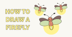 How to Draw a Firefly Featured Image