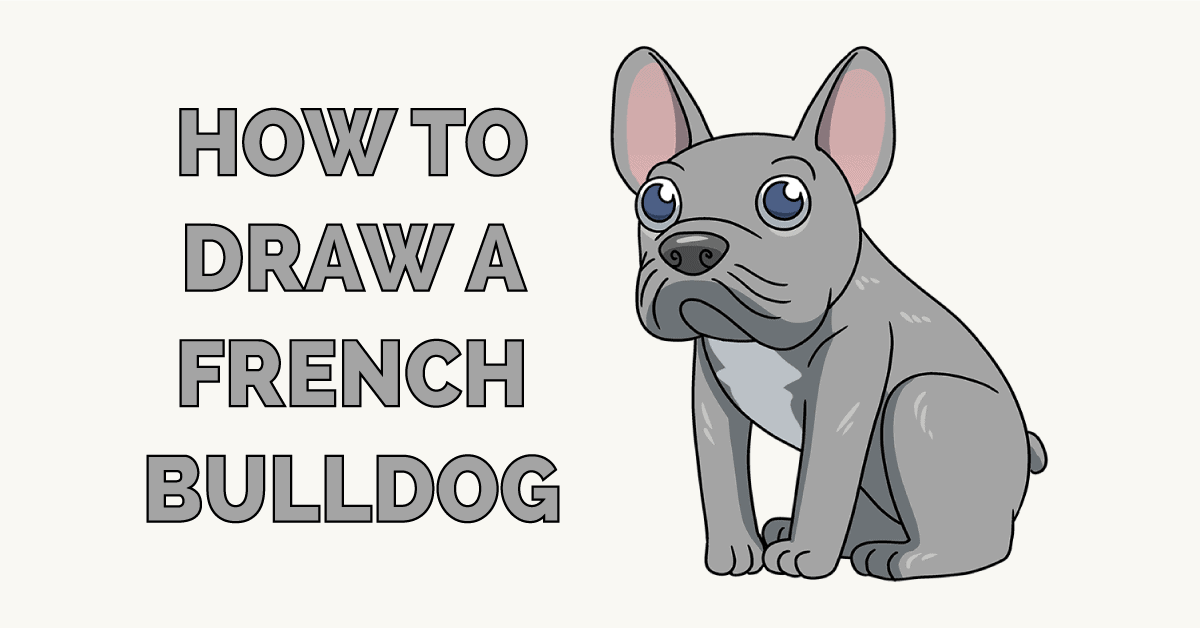 How to Draw a French Dog Featured Image