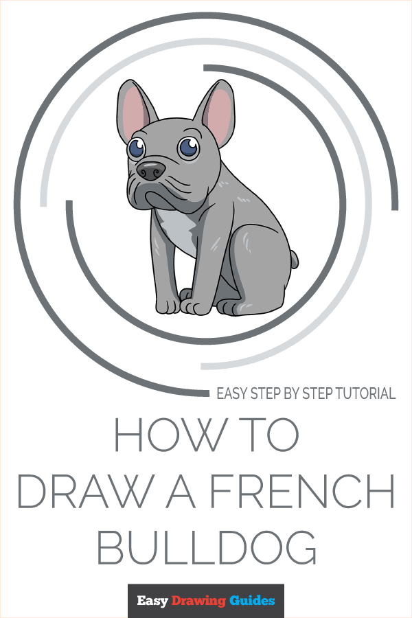 How to Draw a French Dog Pinterest Image