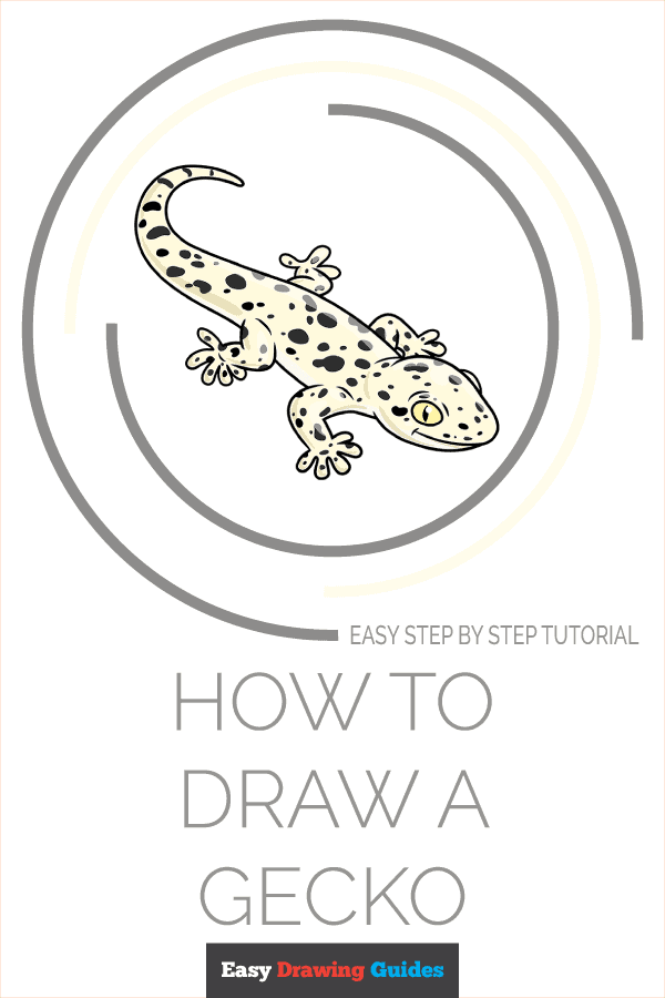 How to Draw a Gecko Pinterest Image