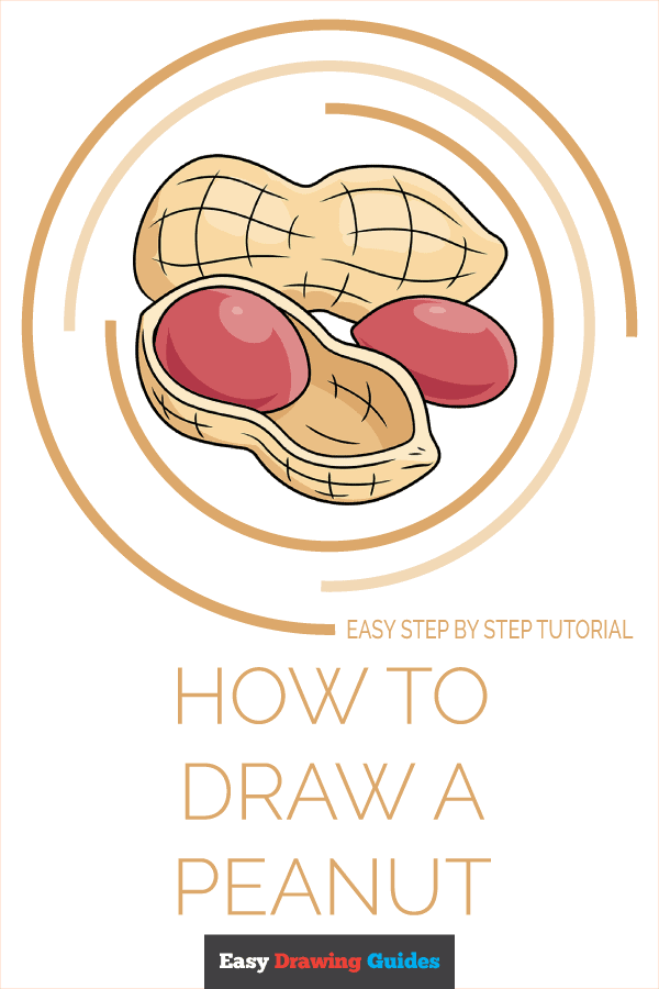 How to Draw Peanut | Share to Pinterest
