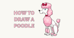 How to Draw a Poodle Featured Image