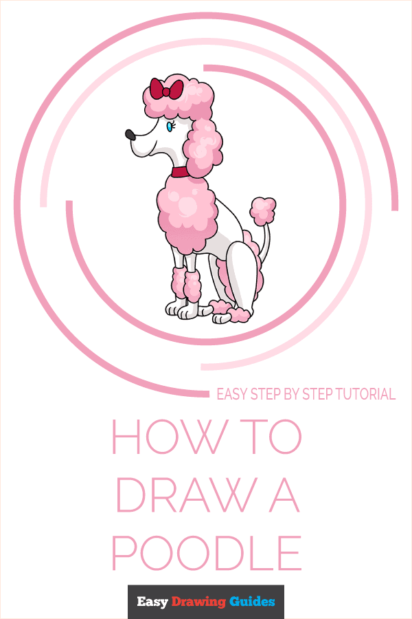 How to Draw Poodle | Share to Pinterest