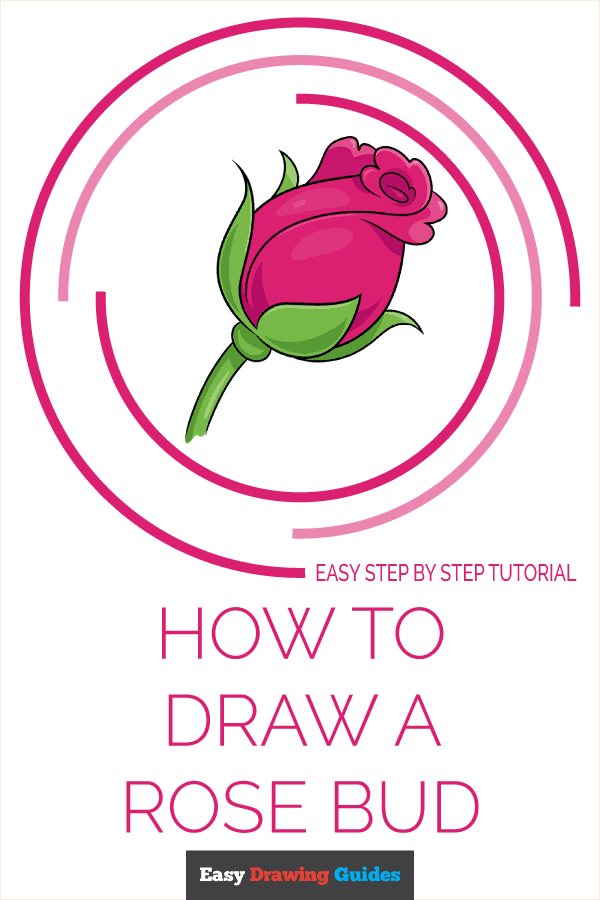 How to Draw Rose Bud | Share to Pinterest