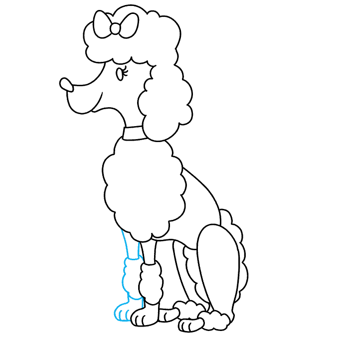 How to Draw Poodle: Step 8