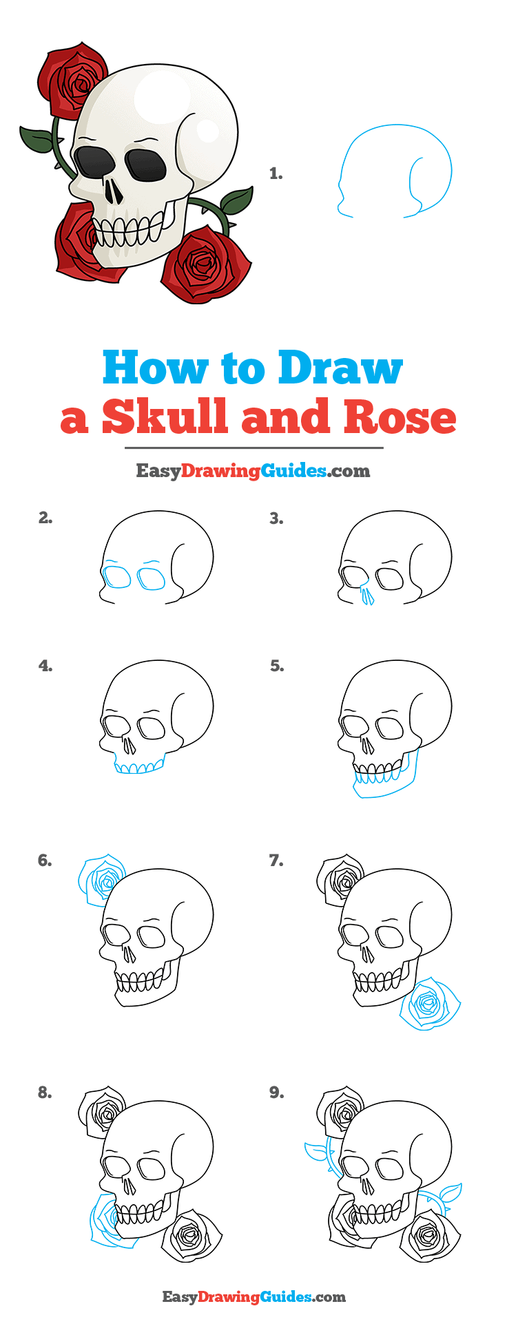 How to Draw a Skull and Rose Step by Step Tutorial Image