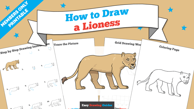 download a printable PDF of Lioness drawing tutorial
