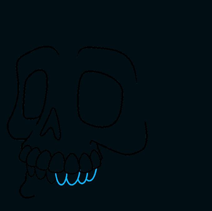 How to Draw a Cartoon Skull Step 07