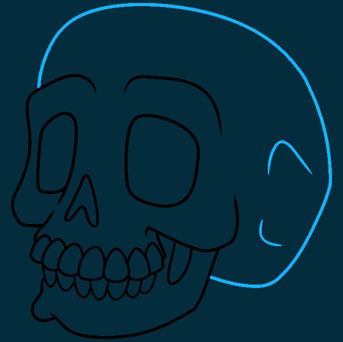How to Draw a Cartoon Skull Step 09