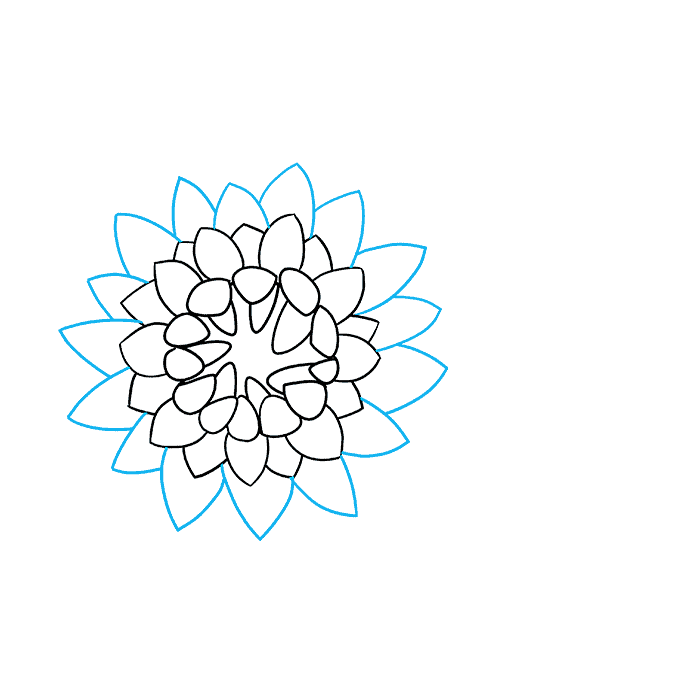 How to Draw Chrysanthemum: Step 6