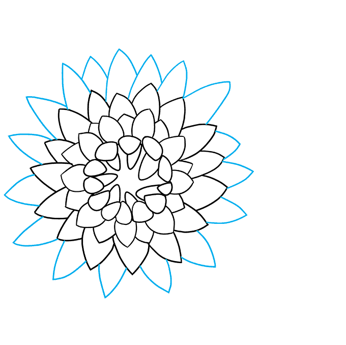 How to Draw Chrysanthemum: Step 7